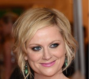 Amy Poehler/Getty Images